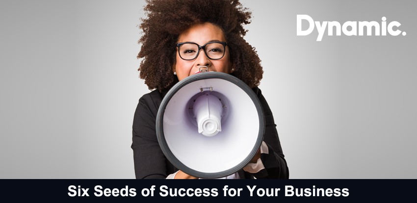 Six Seeds of Success for Your Business