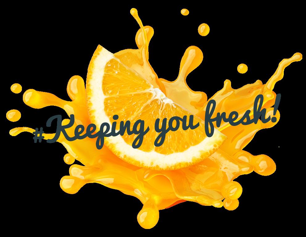 website management keeping you fresh