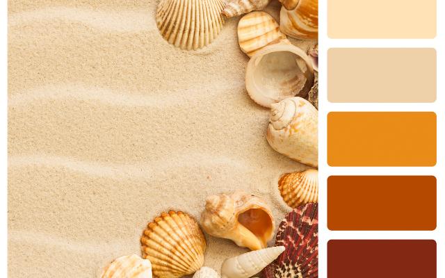 brand Design Colour Palette